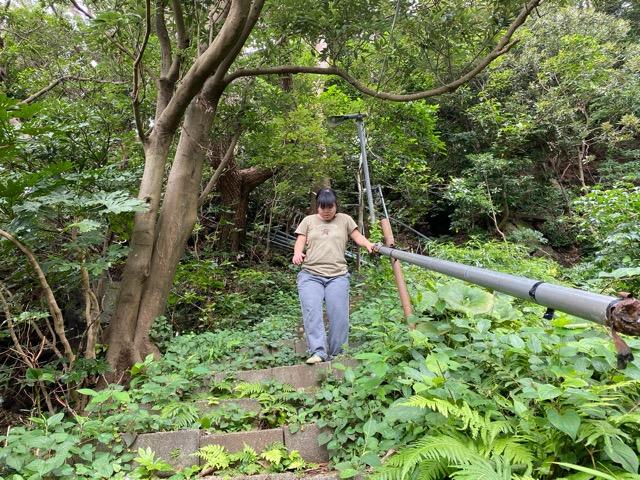 ガンダーラ真鶴入口からキャンプサイトへの階段を下りているらぶりん