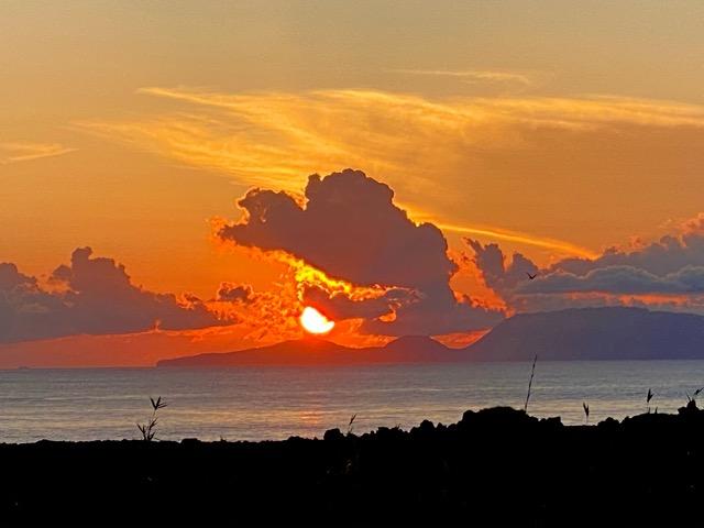 夕陽がうつぼ