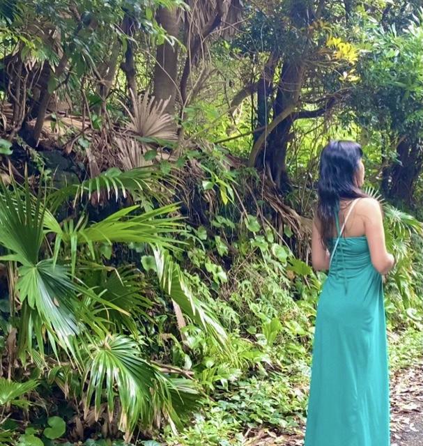 ジャングルと私